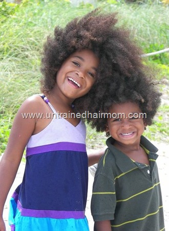 African American Natural Hair Photo